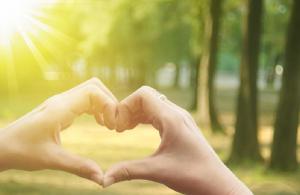 Visolie bevat omega 3-vetzuren die goed zijn voor het hart